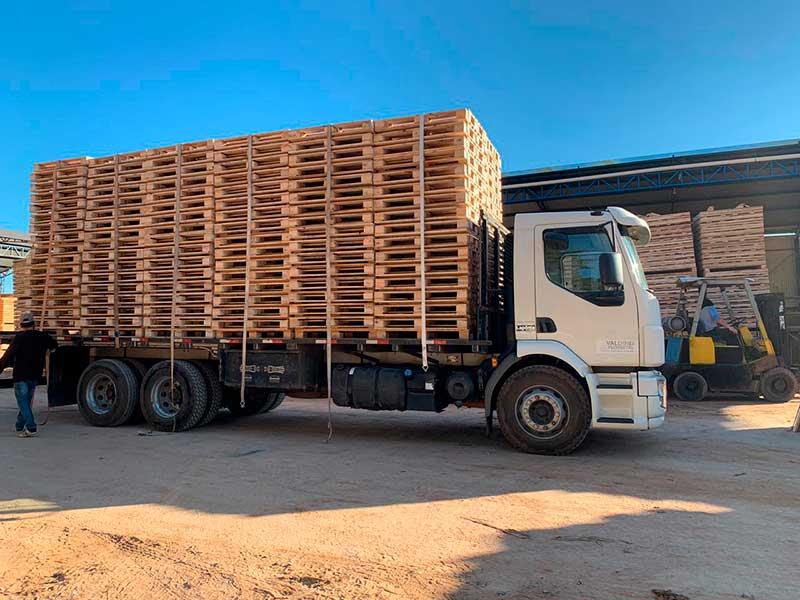 A madeira, de forma geral, fornece diversos subprodutos para utilização humana. Além dos mais famosos, como celulose e móveis, o cavaco de madeira é um derivado do tronco da árvore interessante para área industrial.